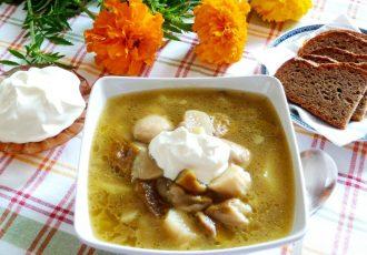 Суп из лесных грибов с картофелем
